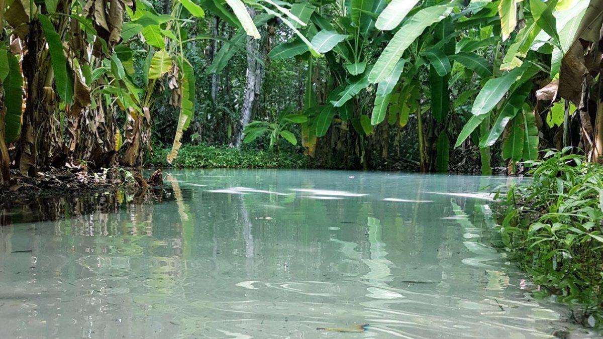 Fervedouro do Ceiça: o primeiro a ser descoberto no Jalapão