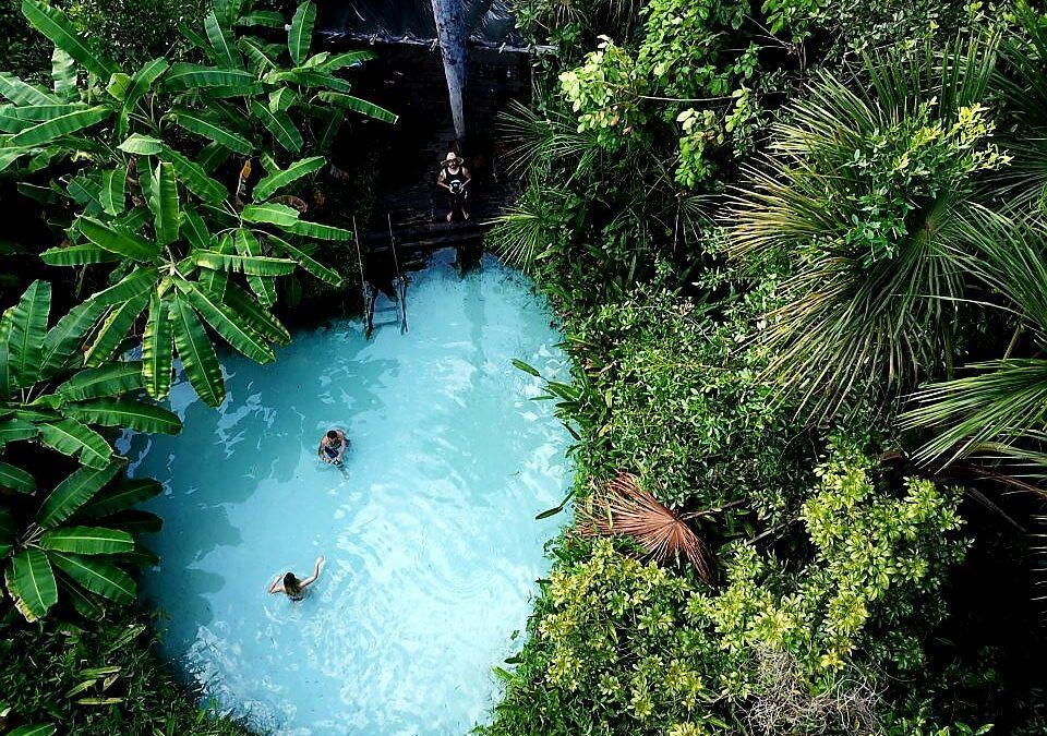 Parque Estadual do Jalapão: Fervedouro Buritis